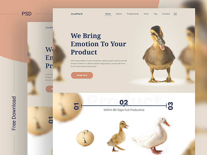 DuckPack Landing Page ll Free Download by uiexpert ~ EpicPxls