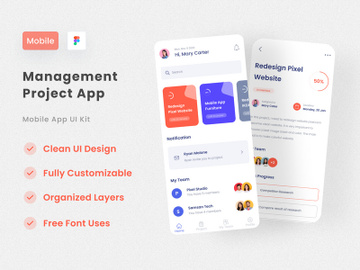 Management Project App preview picture