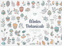 Winter Botanicals Vector Illustrations preview picture