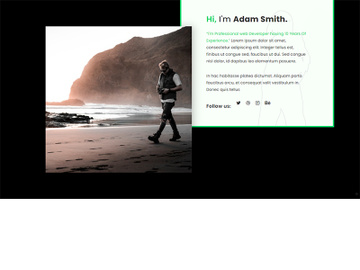 About Us Page Template Design preview picture
