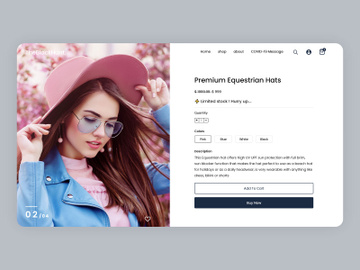 E-Commerce Online Shopping Landing Page preview picture