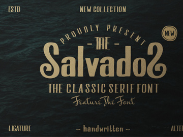 Salvados preview picture