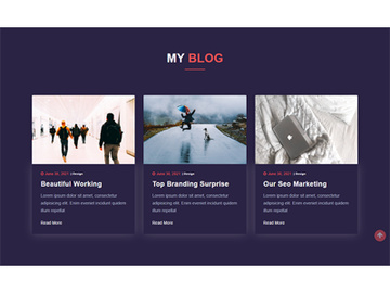 Blog Page Template Design preview picture