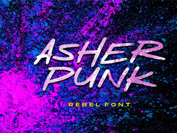 Asher Punk preview picture